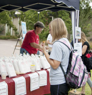 Farmer's market returns with more produce