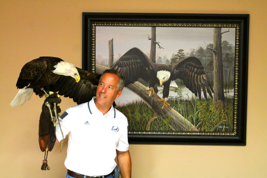 Georgia Southern alumnus and falconer Steve Hein is the handler of Freedom, the live mascot of the Ga. Southern Eagles. Hein has a history as an artist, as he has worked with Ducks Unlimited, Quail Unlimited and the National WildTurkey Federation. Hein stands in front of a painting he created in 2006, commemorating the 100th anniversary of the university.