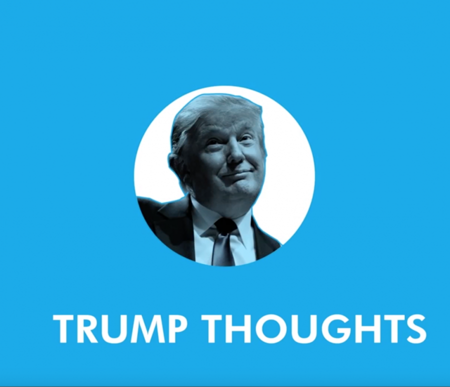 Trump+Thoughts