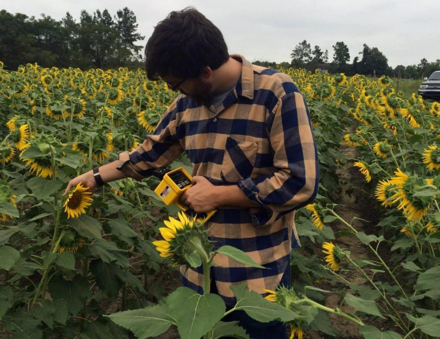 Students in the Field: Sunflower Edition