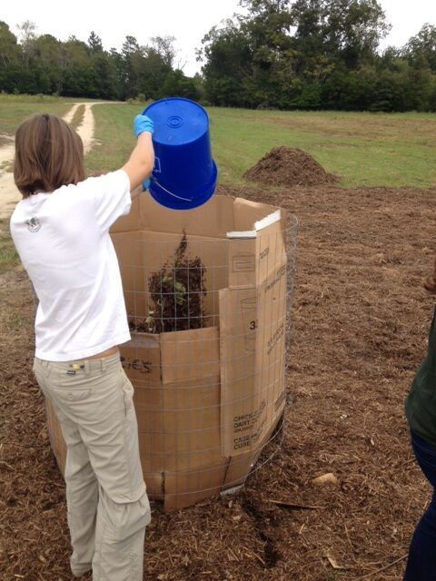 Center for Sustainability Begins On-Campus Composting