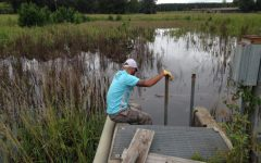 Led by Biology Associate Professor Checo Colon-Gaud, Ph.D., Georgia Southern University researchers will study how climate change could impact a species' life-cycle in ephemeral ponds at the Bo-Ginn National Fish Hatchery. Photo courtesy of news.georgiasouthern.edu.