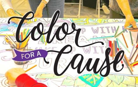 The second annual color for cause will be held at the Statesboro mall to raise money and awareness in support of local organizations.Photo found on Color for Cause Facebook page.