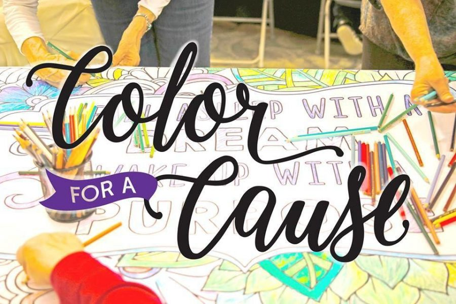 The second annual color for cause will be held at the Statesboro mall to raise money and awareness in support of local organizations. Photo found on Color for Cause Facebook page.