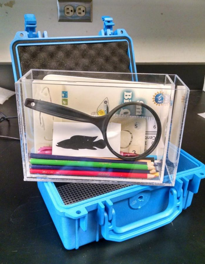 Guppy kits include a variety of items including a tank, coloring pencils and more.Photo courtesy of emilykane.blogspot.com.