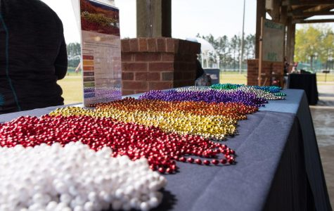 Participants were given needs to wear on the walk. The different colors represented the meaning for the walk.
