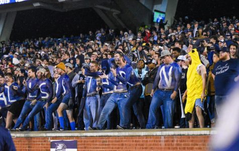 Eagle fans shown celebrating during the Georgia Southern-Appalachian State game