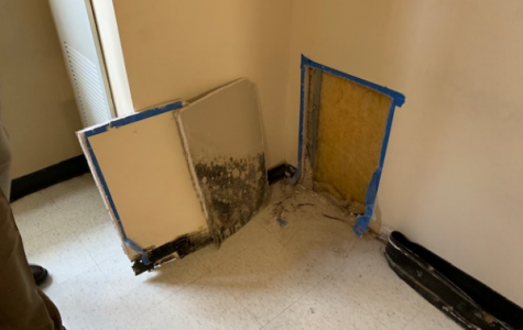 The photo above depicts the conditions inside of the wall cavity of Room 1116B in Kennedy Hall as an example of typical encountered conditions. The active mold growth on the inside of the drywall panel has been removed.