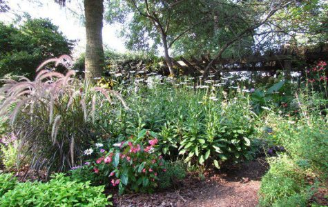 The Georgia Southern botanic garden is hosting its spring plant sale on Saturday and Sunday. Admission is free for the event, and all plant sales will benefit the GS botanic garden.