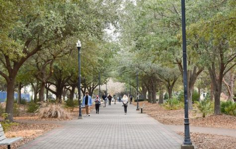 The Center For Sustainability recently accepted a proposal for upgrades to LED lighting on the pedestrian walkway.