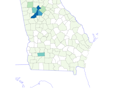 The Georgia Department of Public Health's Daily Status Report shows one confirmed case of COVID-19 in Bulloch County as of noon Sunday.