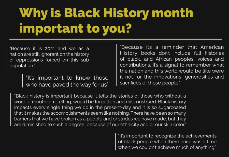 Black+history+month+questions1