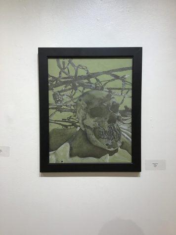 Skull by Sabrina Harn