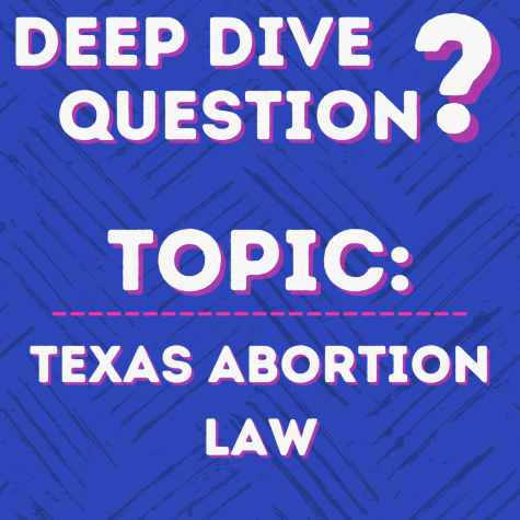 Deep Dive Question | Texas Abortion Law
