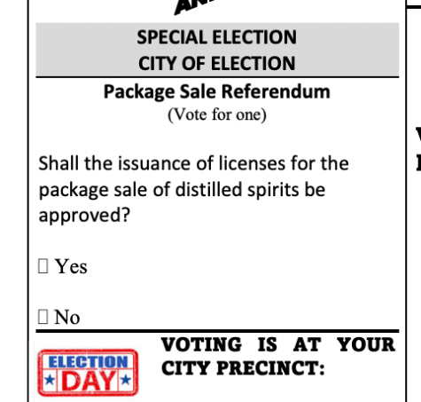 Sample ballot taken from Bulloch County Elections website.